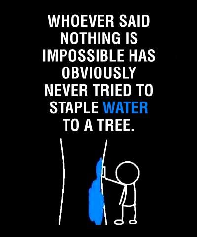 Whoever said nothing is impossible obviously never tried to staple water to a tree.